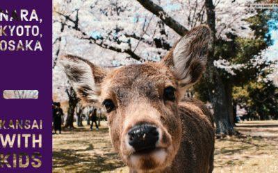 Kyoto, Nara, Osaka – Kansai with Kids