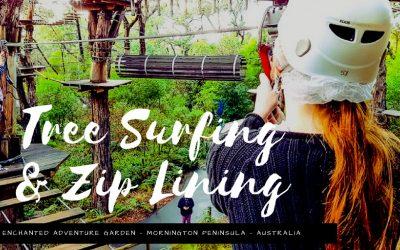 Tree Surfing Mornington Peninsula Australia