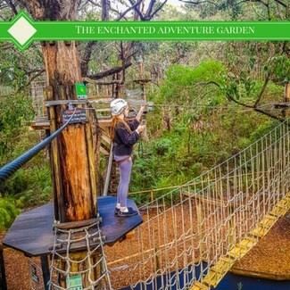 tree surfing platform at the enchanted adventure graden