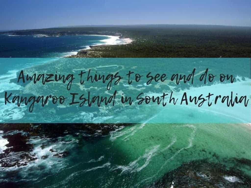 5 things to do on Kangaroo Island South Australia • Wyld