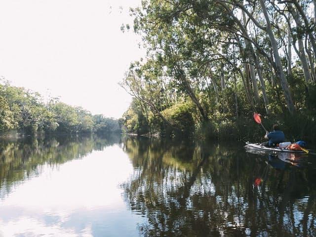 Nature around Noosa Queensland