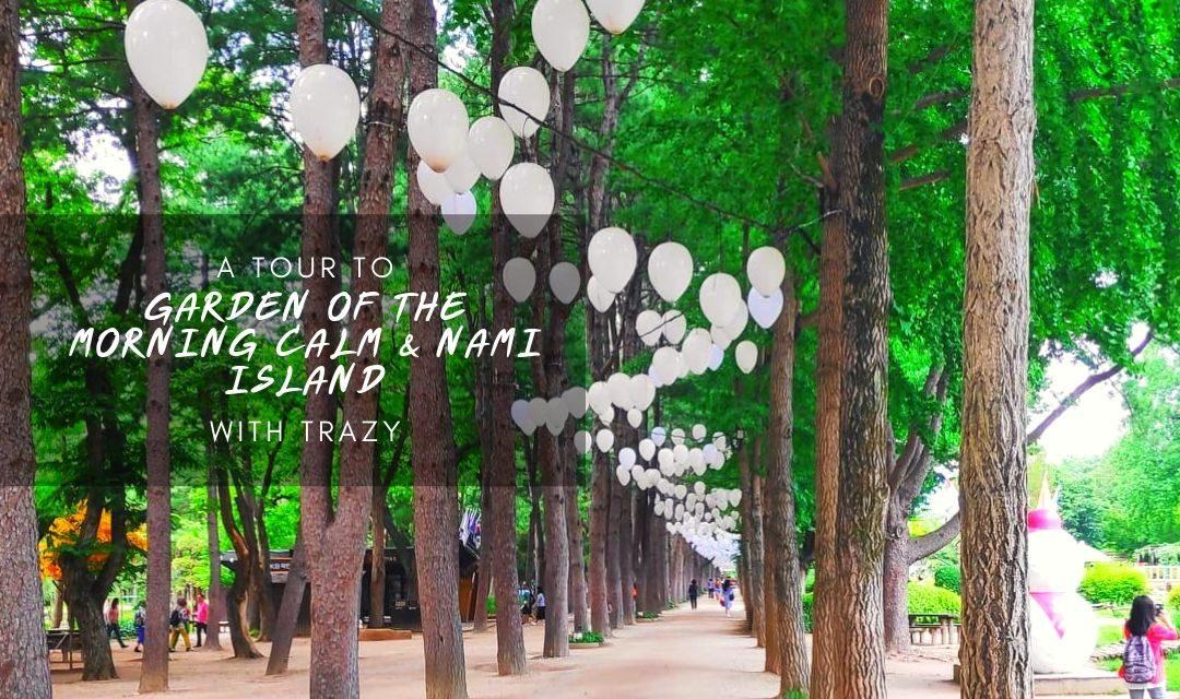 Nami Island & Garden of Morning Calm Tour with Trazy