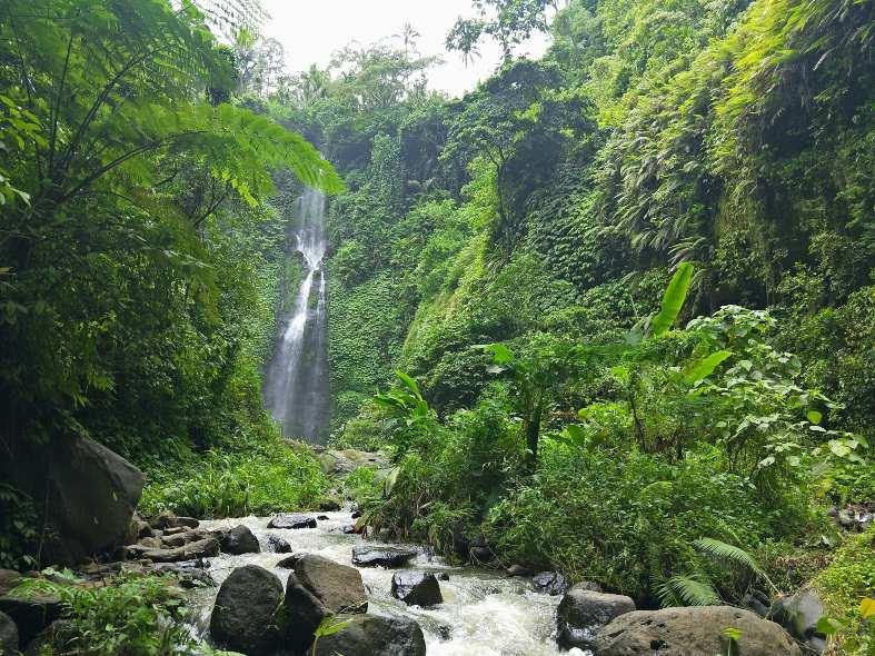 a beautiful waterfall in the jungle of North Bali