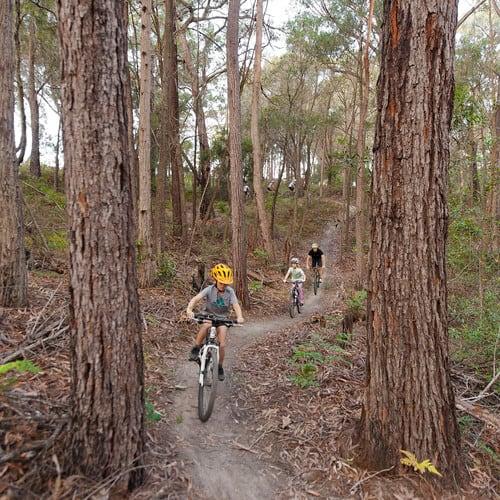 Mountain biking near Merimbula