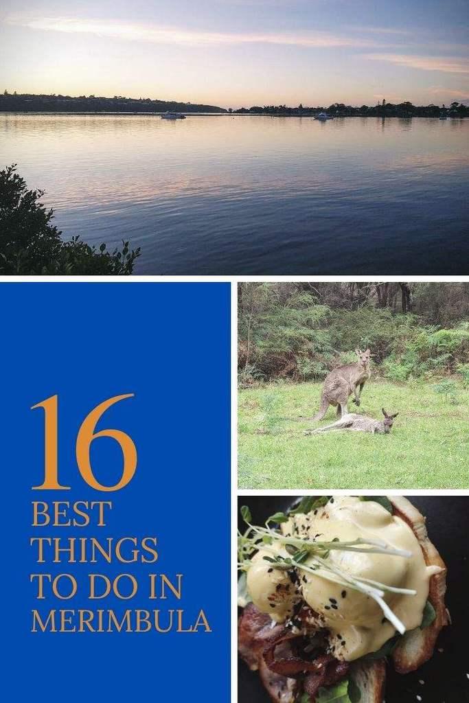 16 Best things to do in Merimbula